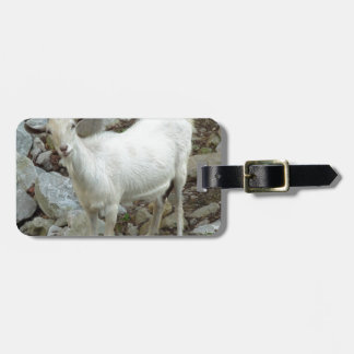 Billy Goat Luggage Tag