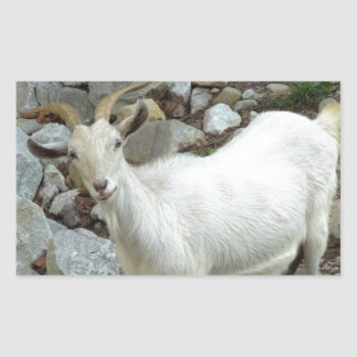 Billy Goat Rectangular Sticker