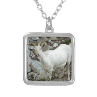 Billy Goat Silver Plated Necklace