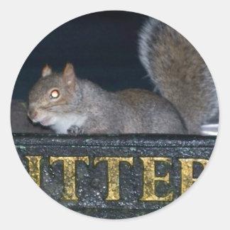 Bin-raid! Cheeky squirrel Round Sticker