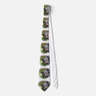 Binturong Tie