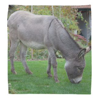 Biological Lawn-Mower On Four Hooves Kerchief