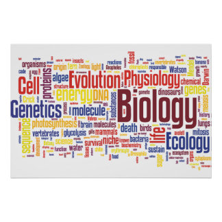 Biology Wordle No. 4 Poster