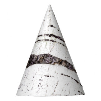 Birch bark pattern party hat