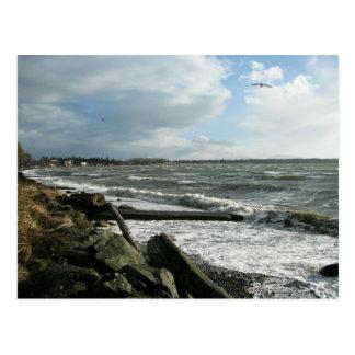 Birch Bay Wind Storm Postcard