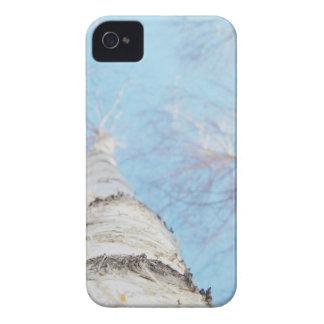 birch Case-Mate iPhone 4 cases