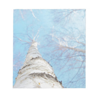 birch notepad