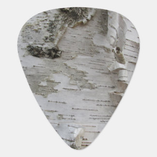 Birch Tree Bark Peeled Old Photo Art Guitar Pick