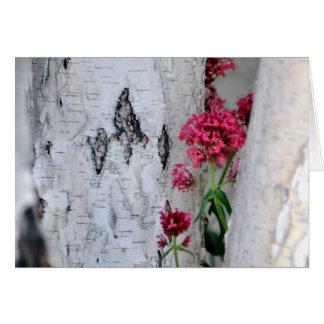 Birch Tree Bark Texture Card