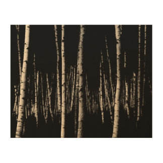 Birch Tree Forest in Sepia Wood Print