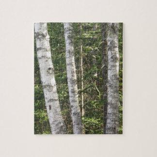 Birch Tree Puzzle