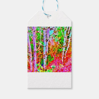 Birch Trees in Springtime Gift Tags