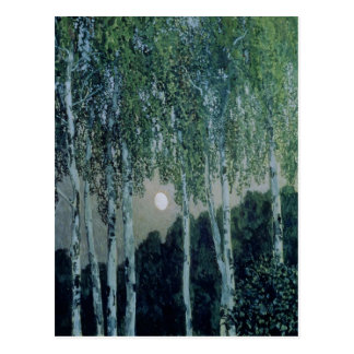 Birch Trees Postcard