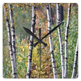 Birch Trees Square Wall Clock