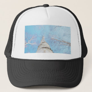 birch trucker hat