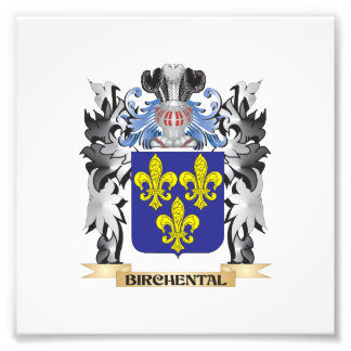 Birchental Coat of Arms - Family Crest Photograph