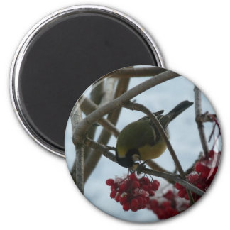 Bird and Berry 6 Cm Round Magnet