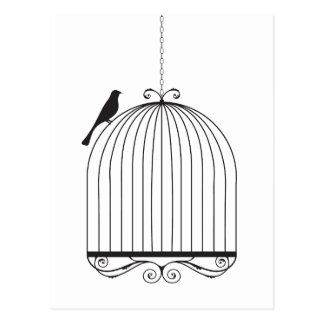 Bird and Birdcage Postcard