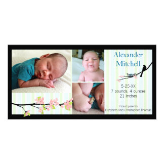 Bird and Blossoms Photo Birth Announcement Picture Card