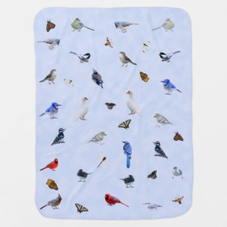Bird and butterfly blanket: baby blanket