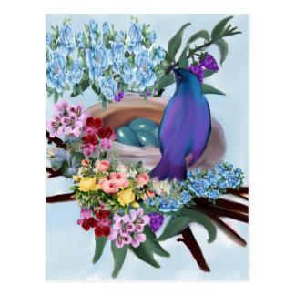 bird and nest postcard