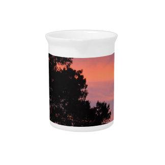 bird at sunset pitcher
