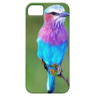 Bird blue_iphone case for the iPhone 5
