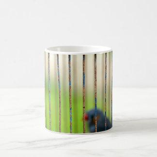 Bird, Cage Coffee Mug