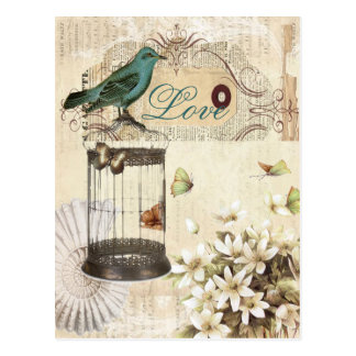 Bird cage Vintage floral  Paris fashion Postcard