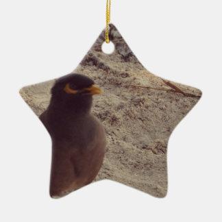 Bird Ceramic Star Decoration
