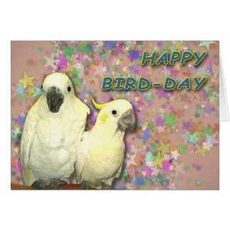 Bird Day Card