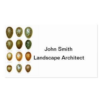 Bird Eggs No.1 Easter Decor Business Card Template