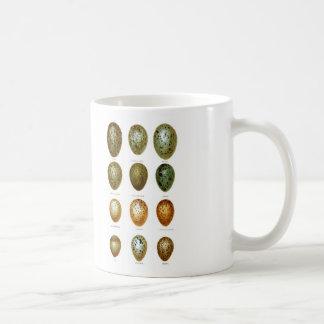 Bird Eggs No.1 Easter Decor Mugs