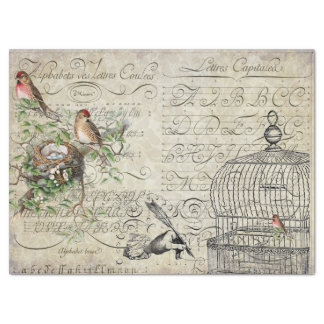 Bird Ephemera Decoupage Sheet