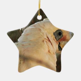 Bird Eyes Ceramic Star Decoration