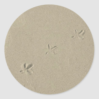 Bird footprints in sand classic round sticker