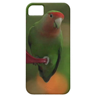 Bird green_iphone barely there iPhone 5 case