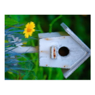 Bird House Postcard