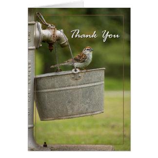 Bird in a bucket card