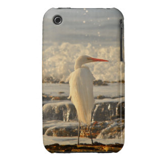 Bird in Paradise iPhone 3 Covers