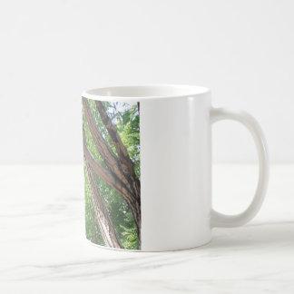 Bird in the Branches Basic White Mug