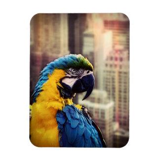 Bird In The City Magnet