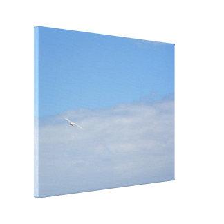 Bird in the Sky Canvas Print