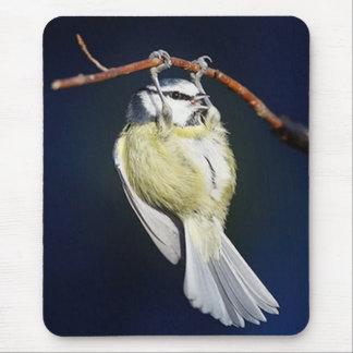 Bird Mouse Pad