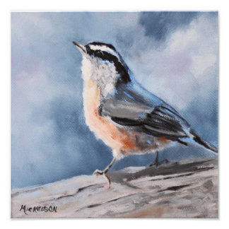 Bird Nuthatch Fine Art Print