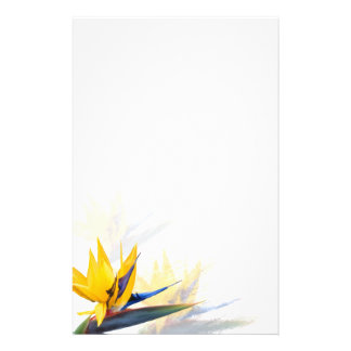 Bird of Paradise Blank Writing Paper