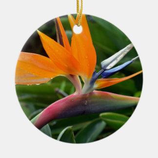 Bird Of Paradise Ceramic Ornament