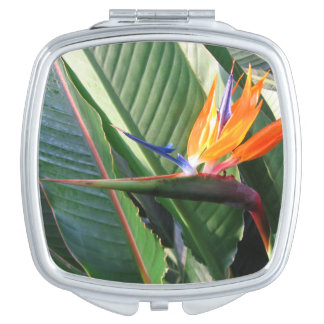 Bird of Paradise Compact Mirror