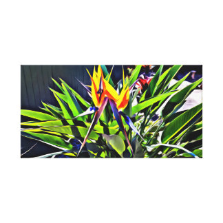 Bird of Paradise Flower Canvas