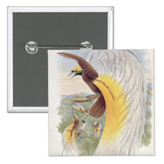 Bird of Paradise, from 'Birds of New Guinea' 15 Cm Square Badge